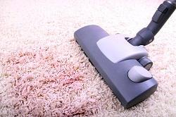Carpet Cleaners Services in Harringay, N4